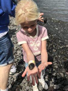 Navnene på Sonobe lamperne er givet efter fossiler i det danske kridt og kalklandskab. Freja Marie på 6 og frederik på 16 år leder efter fossiler på stranden v Møns Klint
